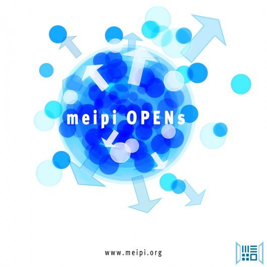 MEIPI